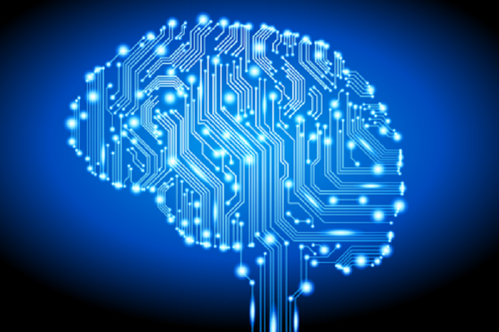 Are Brain Circuits Responsible for Learning Human Language?