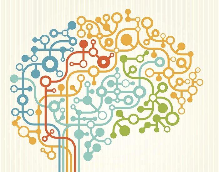 Understanding the Unique Brain Networks of Autistic Infants