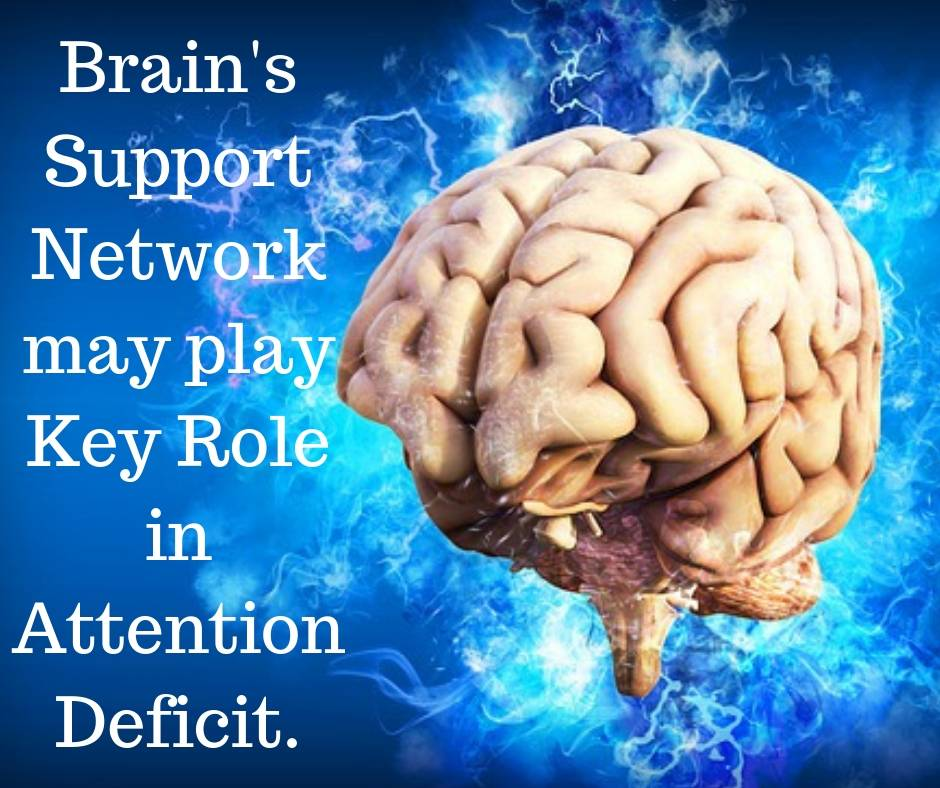 Brain's support network may play key role in attention deficit.