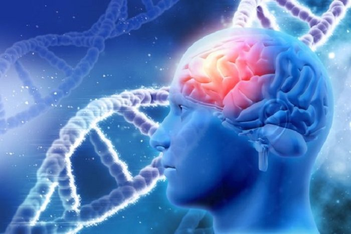 Autism genetics study calls attention to motor skills and general cognitive impairment