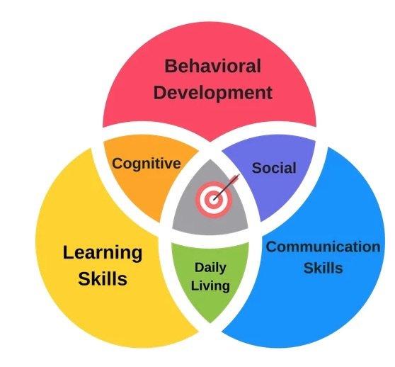 autism 360 focus areas