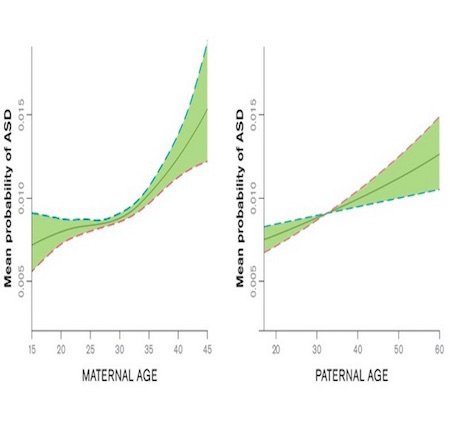 Fig 11: Mean Probability of ASD With Parent's Age