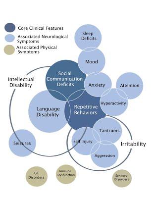characteristics of Autism
